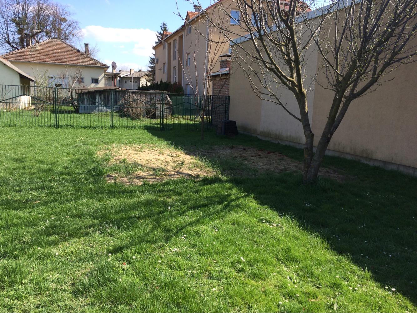 Vrt prije uredjenja